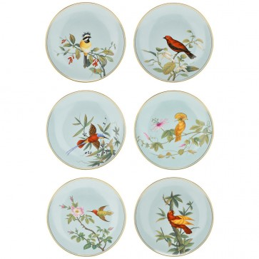 Set of six Hand-Painted Porcelain Bird Plates